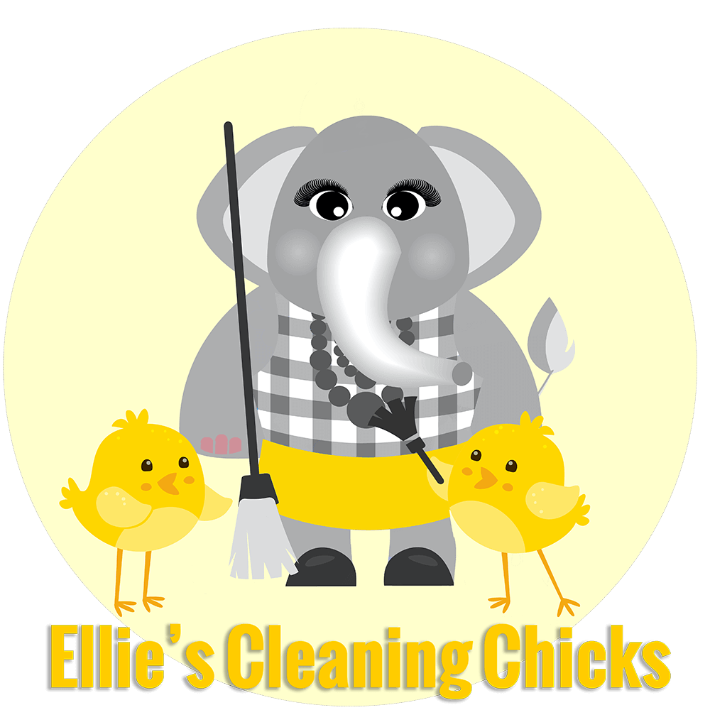 Ellie's Cleaning Chicks Household cleaning services Johannesburg